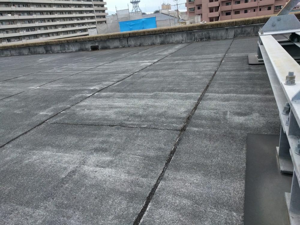 ネオホワイトⅤ 屋上
